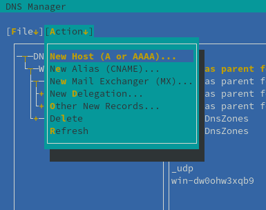File:Admin tools DNS Manager Add records.png